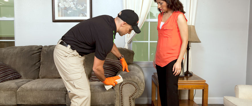 Irwindale, CA carpet upholstery cleaning