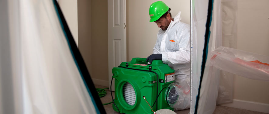 Irwindale, CA mold cleanup